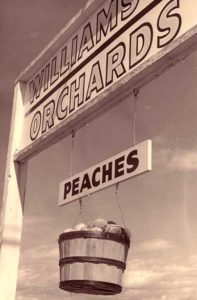 "This sign always worked like a charm, but sometimes the peaches would go ""missing."" Maybe that's why people kept coming out to get their fruit!"